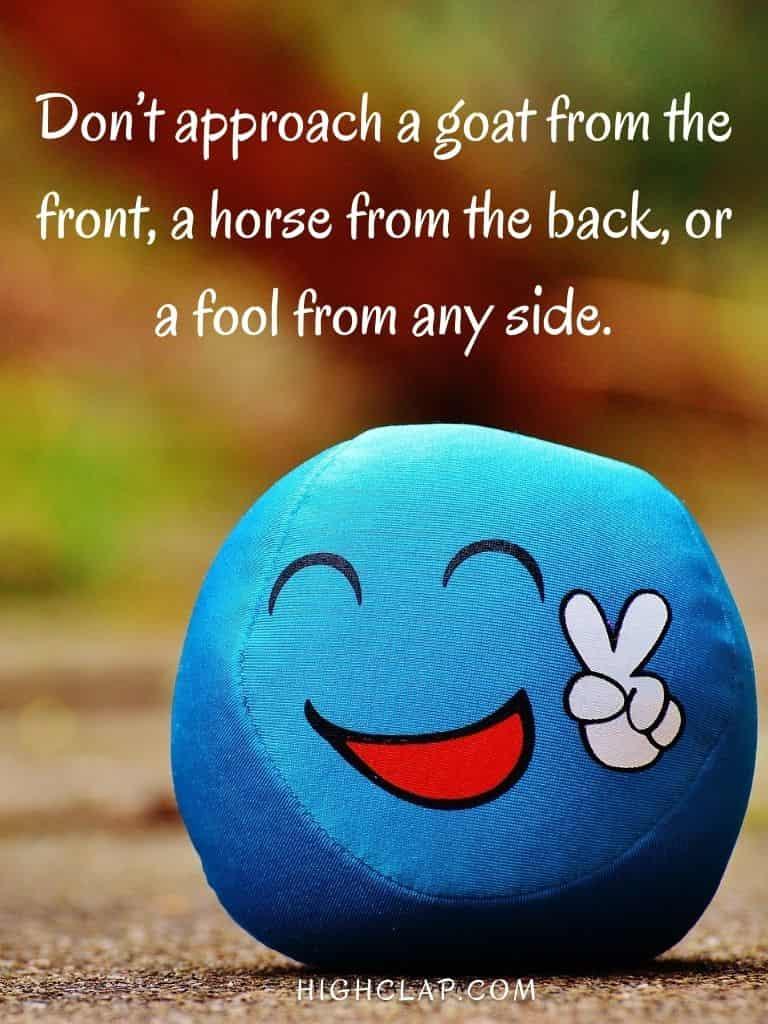Dont approach a goat from the front, a horse from the back, or a fool from any side - Aprill Fool Day