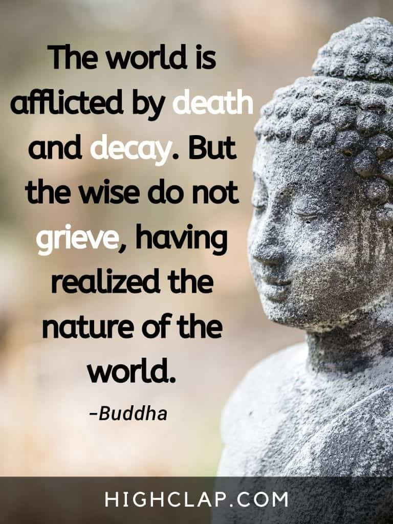 The world is afflicted by death and decay. But the wise do not grieve, having realized the nature of the world- Gautam Buddha Quote