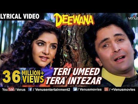 Teri Umeed Tera Intezar (तेरी उम्मीद तेरा इंतज़ार) Lyrics- Deewana | Kumar Sanu